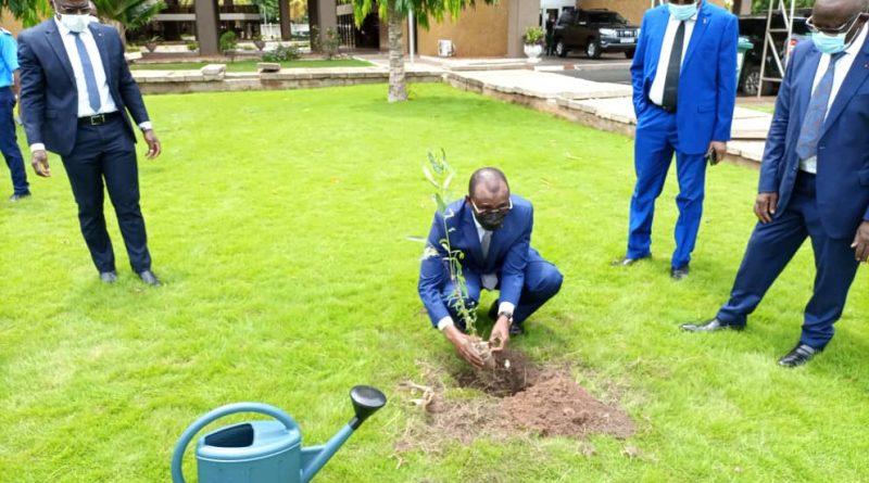 Journée nationale de l'arbre: Sani Yaya perpétue la tradition